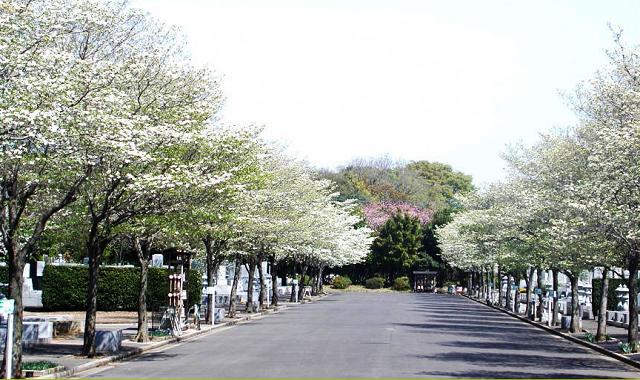 tsukubakukizakireien001