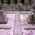 墓地の使用権について
